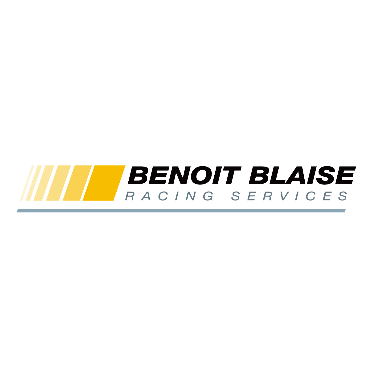 BLAISE SERVICE